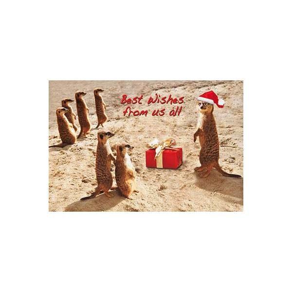 """Weihnachtskarte, Motiv: """"Erdmännchen"""" Klappkarte"""