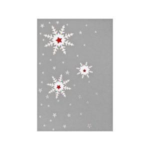 Weihnachtskarte, Laserkarte silber, Einlegeblatt, rote Folienprägung Klappkarte