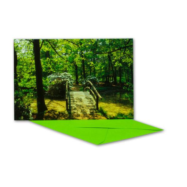Glückwunschkarte, Wald mit Holzbrücke über Bach