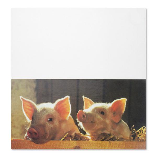 """Glückwunschkarte """"Glücksschweine"""""""